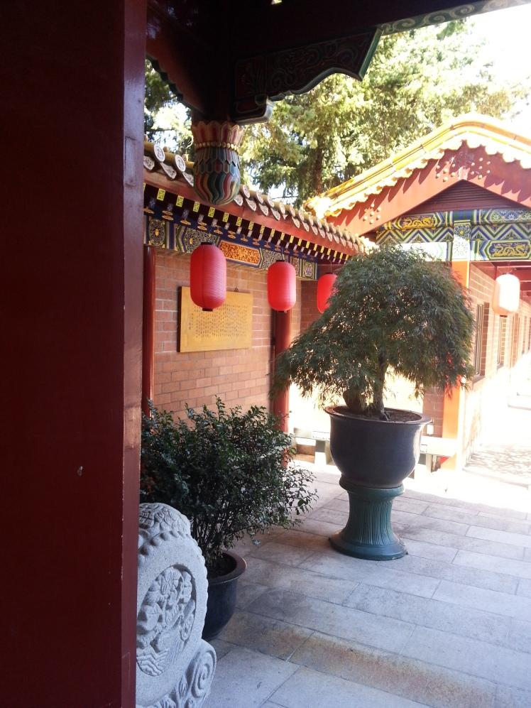Buddhist Temple - Chinese Lanterns