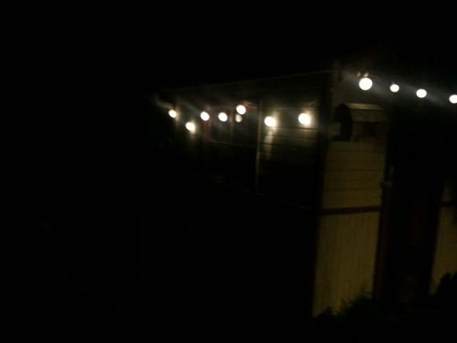 fairy lights & shed