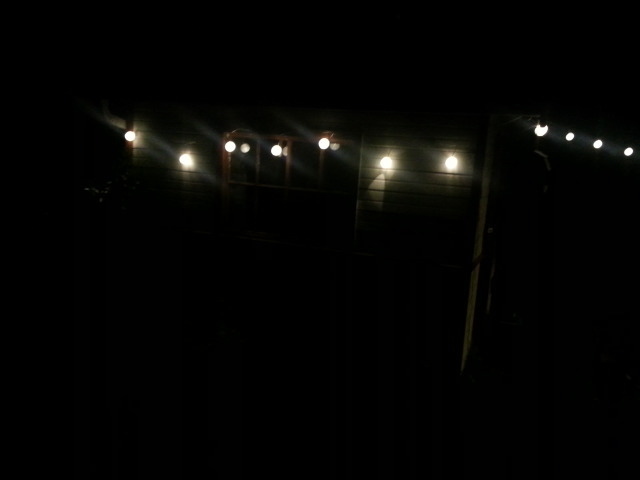fairy lights & shed2