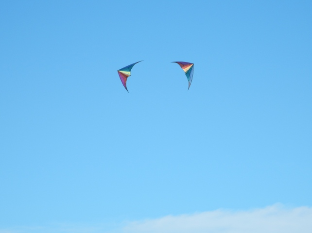 Beach - KIte at Garry Point