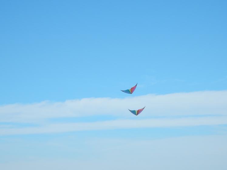 Beach - Kite2 at Garry Point