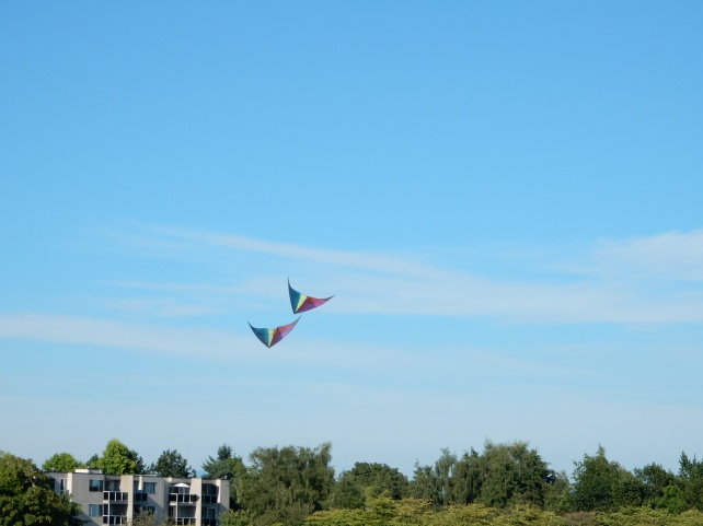 Beach - Kite3 at Garry Point
