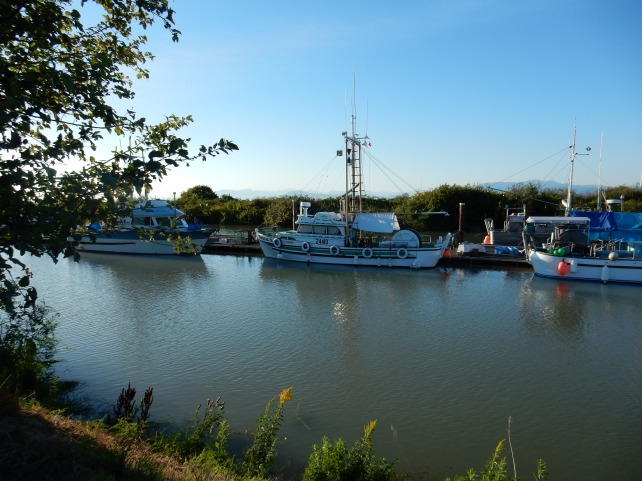 Steveston, Scotch Cove8