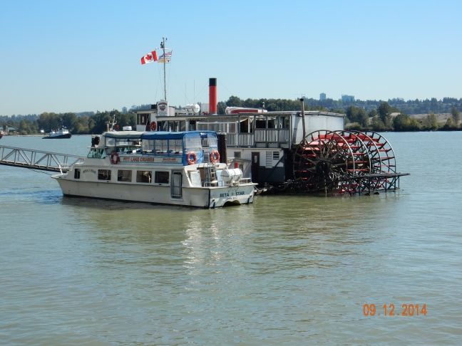 Westminster Quay - Paddle Steamer